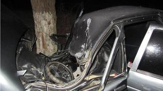 На Ставрополье пенсионер разбился насмерть после столкновения с деревом