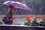 Новости: Прогноз погоды
