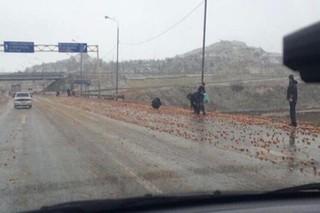На Ставрополье дорогу близ села Канглы усеяли яблоками