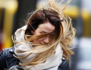 Синоптики предупредили о сильном ветре на Ставрополье