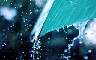 На Ставрополье в пятницу ожидаются дожди и сильный ветер