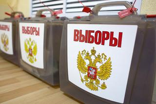 Явка избирателей на выборы в Ставропольском крае составила почти 30 процентов