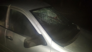 На Ставрополье при столкновении автомобиля с деревом один человек погиб и трое ранены