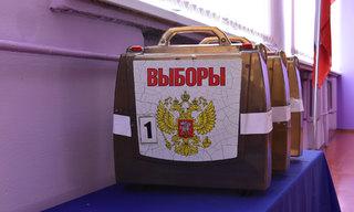 Владимиров лидирует на выборах губернатора с 79,65% голосов