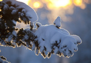 Снег на Ставрополье продержится недолго