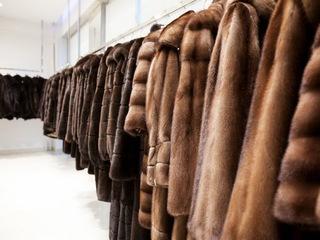 В Пятигорске может быть создана особая экономическая зона для производителей меха