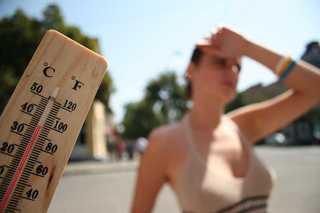 Синоптики обещают жару до 40 градусов и ветер на Ставрополье