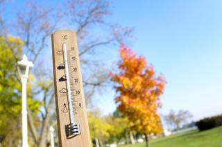 Синоптики обещают потепление до +12 градусов на Ставрополье
