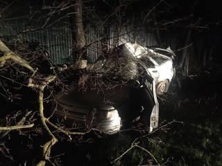 В Предгорном районе пьяный водитель врезался в дерево: двое пострадали