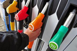 Правительство РФ и нефтяники договорились заморозить цены на топливо