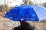 Новости: Дождь