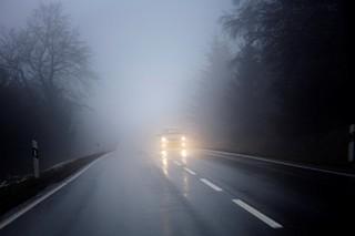 Туман ухудшит видимость на дорогах Ставрополья