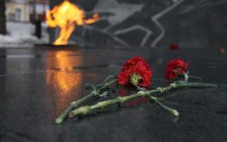 На Ставрополье ищут девушку, изуродовавшую портреты фронтовиков