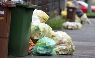 В российских городах прошли акции протеста против «мусорной» реформы