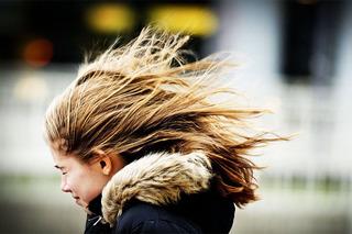 Весна принесет на Ставрополье сильный ветер